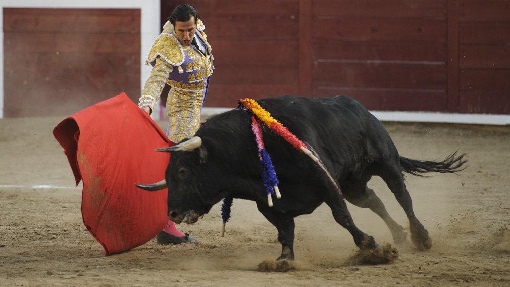 Indulto para el recuerdo en Estella: así ha sido en imágenes la corrida de David Mora, Fortes y Javier Marín
