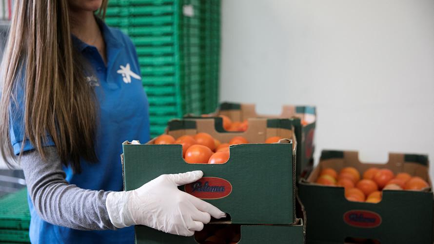 """Una voluntaria trabajando en la acción apoyada por CaixaBank bajo el lema """"ningún hogar sin alimentos""""."""